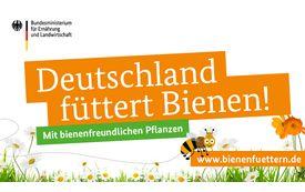 Am 20. Mai ist Weltbienentag: Deutschland füttert Bienen!