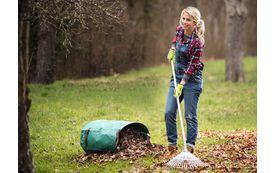 Gartenkalender: Gartenarbeiten im November