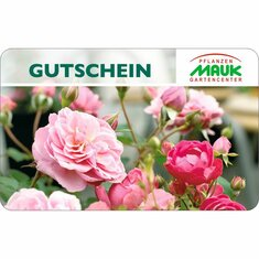 Gutscheinkarte Gartencenter Rose