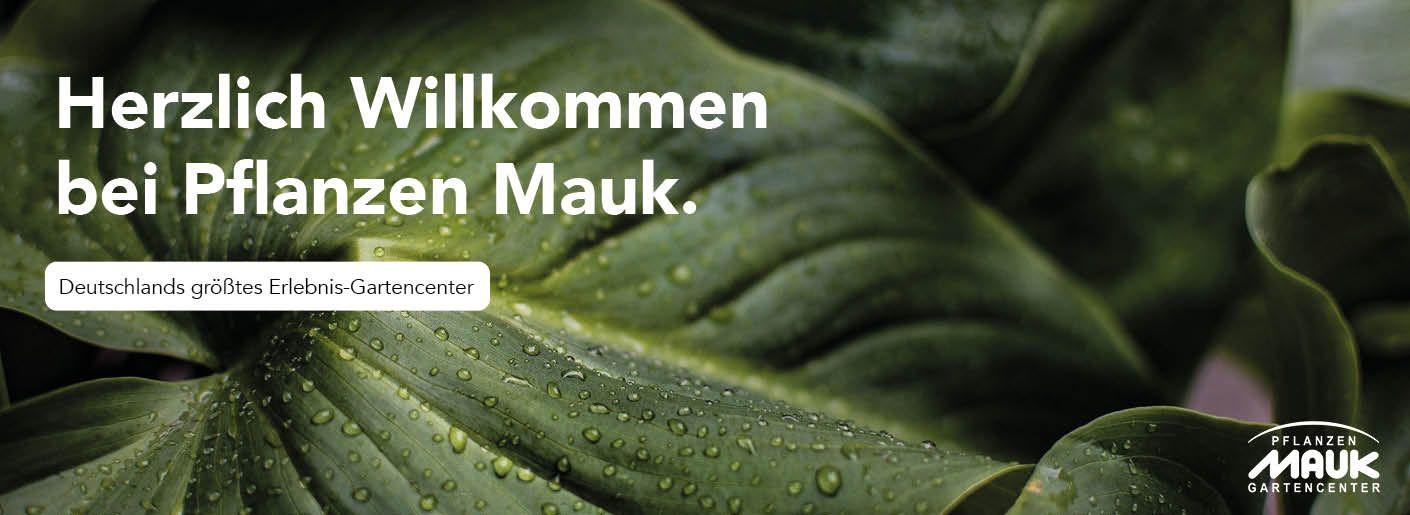 Pflanzen Mauk Deutschlands Grosstes Erlebnis Gartencenter