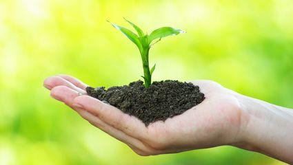 Gartenbedarf  Sortiment - Gartenbedarf | Pflanzen Mauk Erlebnis-Gartencenter
