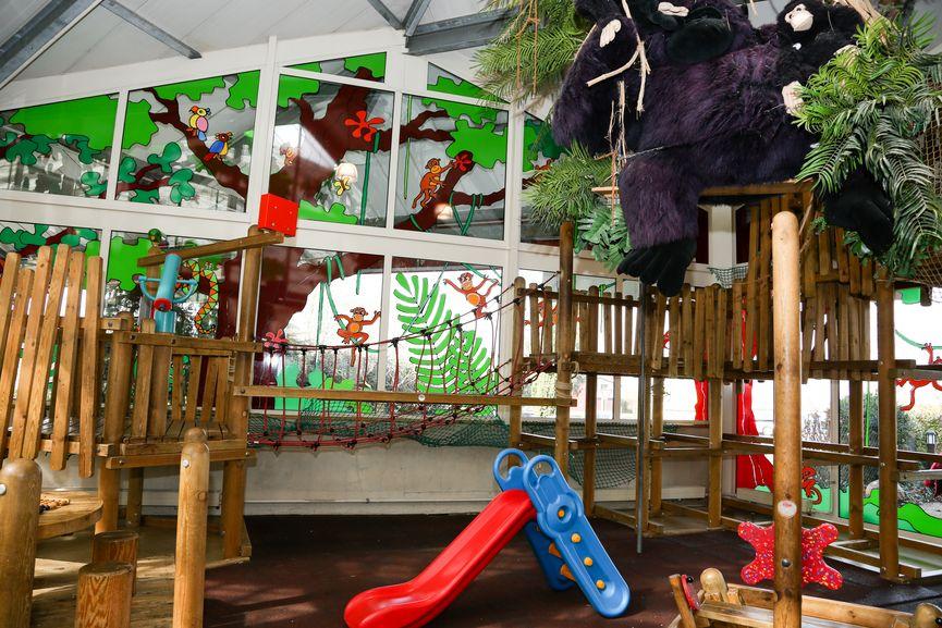 erlebniswelt kinderdschungel pflanzen mauk gartencenter. Black Bedroom Furniture Sets. Home Design Ideas